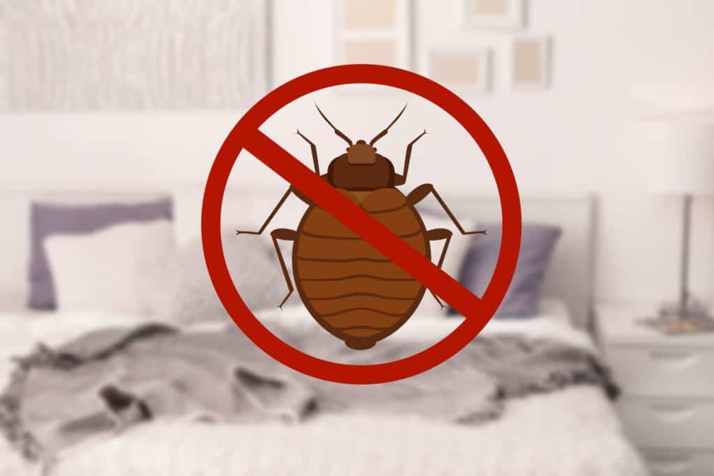 keeping bed bugs from your home